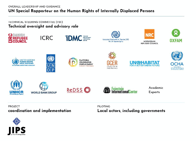UN Special Rapporteur on the human rights of Internally Displaced Persons